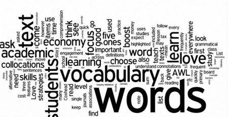 Từ vựng đóng vai trò quan trọng trong học ngoại ngữ
